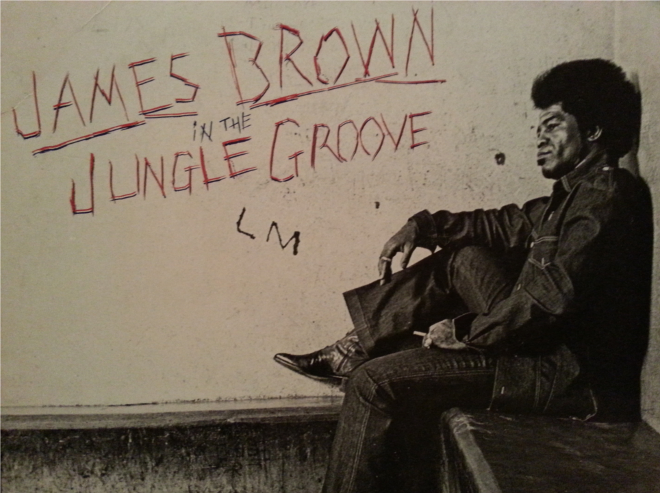 In the Jungle Groove